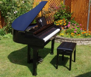 Digital Garand Piano (in a garden)